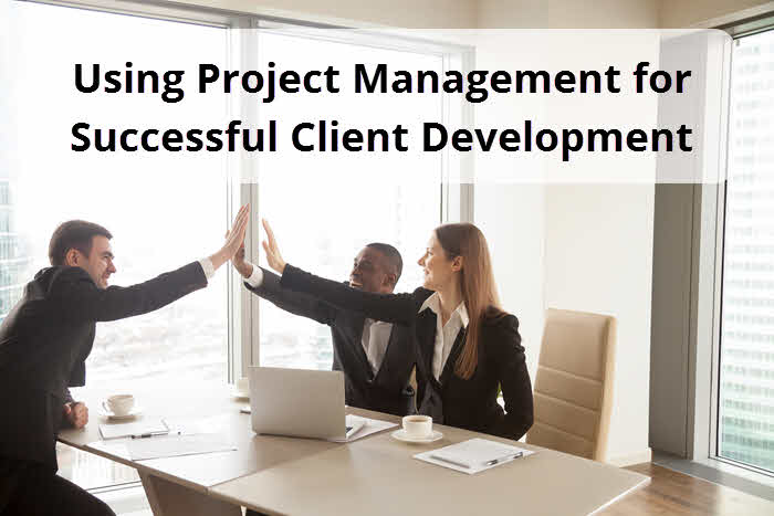 Using-Project-Management-for-Successful-Client-Development  .jpg