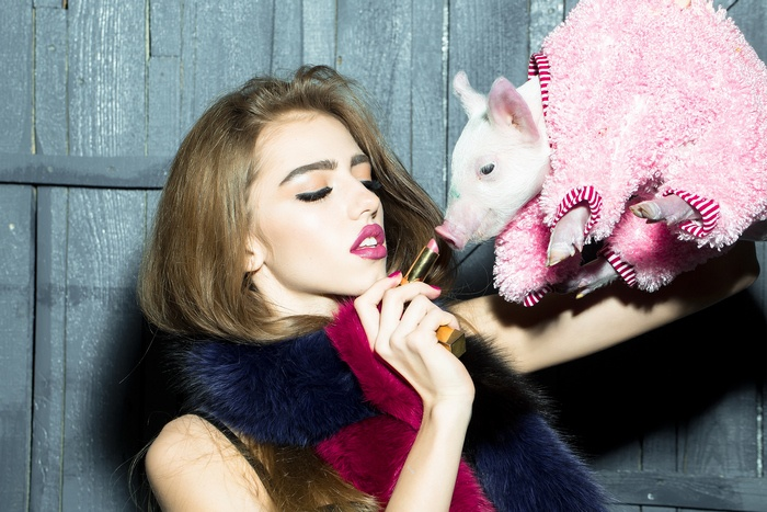 braning-lipstick-pig