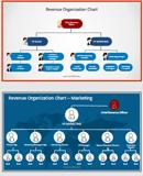 revenue-management-org-chart-sample-2