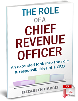 role-of-chief-revenue-officer-cover3-3d-360.png