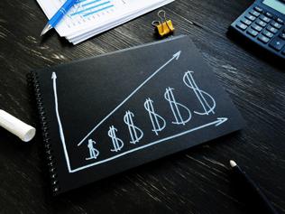 make a profitable revenue generation plan