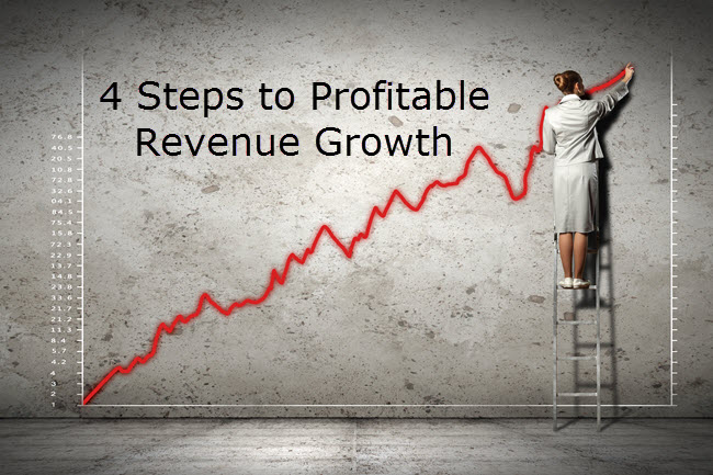 4 steps to profitable revenue growth